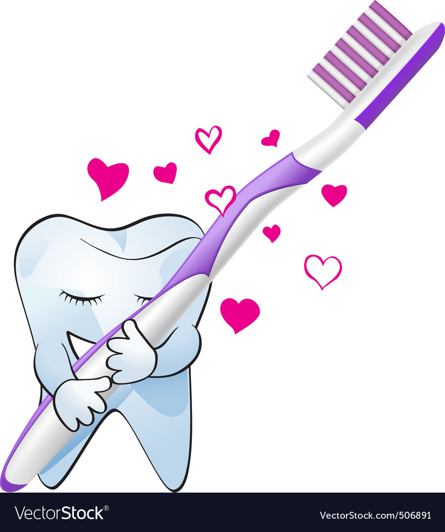 Tooth love vector
