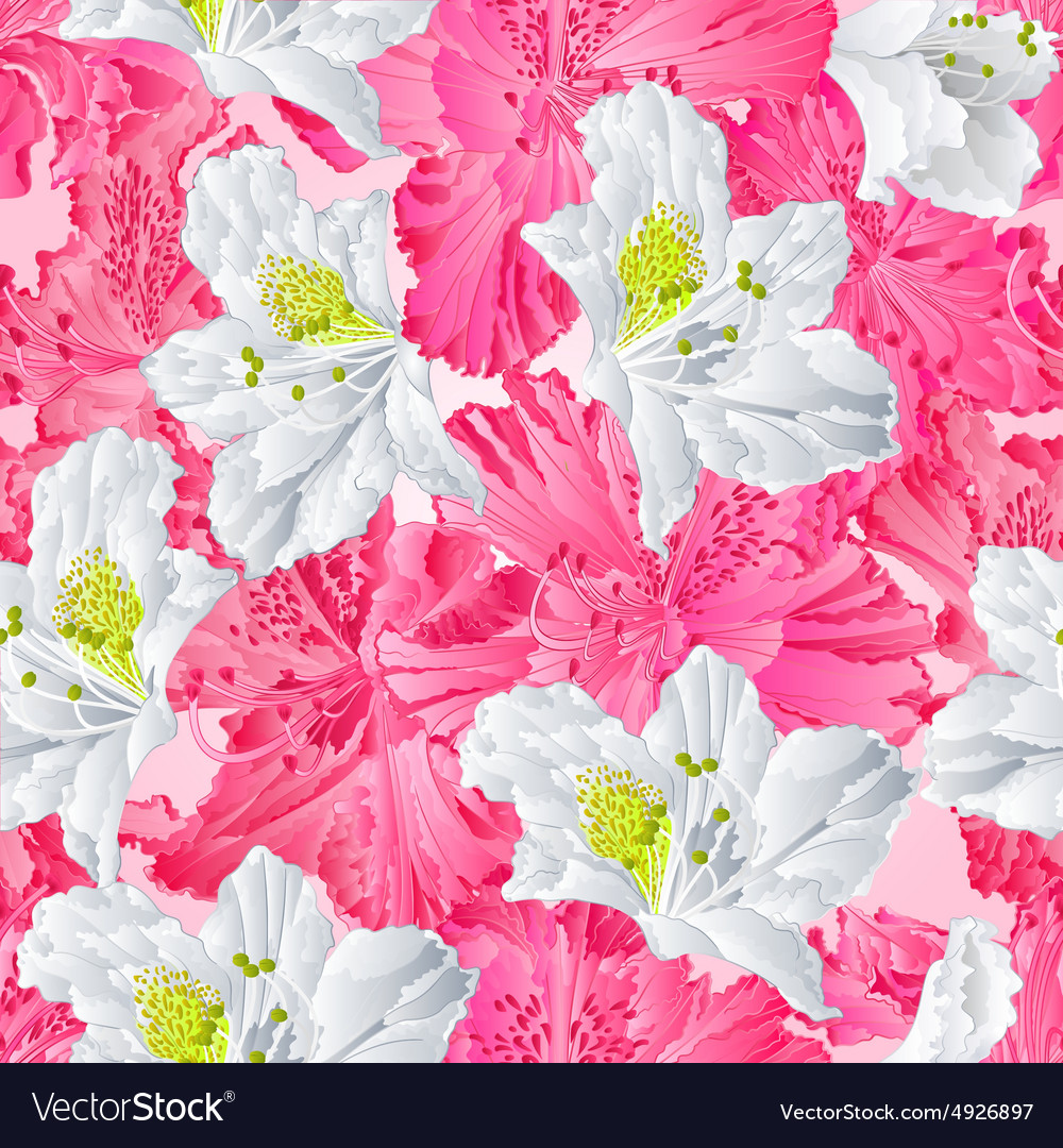 Eamless texture rhododendron pink and white vector