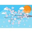 sakura japan cherry branch vector image vector image