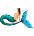 young mermaid vector image