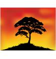 Africa landscape background vector image vector image
