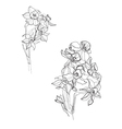 Small iris flowers vector image vector image