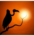 The silhouette of a vulture sunset vector image