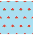 Simple pattern with watermelon slices vector image