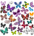 Big collection silhouette colorful butterflies vector image vector image