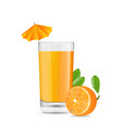 Orange Cool Cocktail vector image vector image