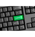 keyboard with green learn vector image vector image