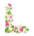 Botanical decorative garland vector image