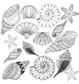 set Shells zentangle seashells for adult vector image