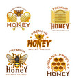 honey icon with bee honeycomb beehive and dipper vector image
