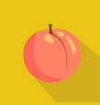 peach flat icon vector image