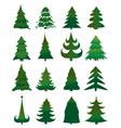 Christmas Pine Trees vector image vector image