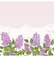 Floral card with lilacs on lilac background vector image