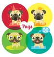 Funny pugs in different situations vector image