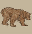 bear sketch vector image