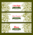 Banners for extra virgin olive oil product vector image