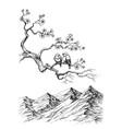 Spring birds on tree branch sketch vector image