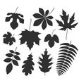 Leaf Silhouette vector image