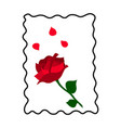 red rose with petals vector image
