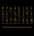 golden rune metal runes vector image