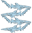 Sketch shark vector image