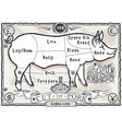Vintage Page English Cut of Pork vector image