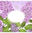 Floral card with lilacs on pink background vector image