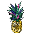 Pineapple tropical fruit object vector image