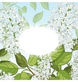Floral card with white lilacs on blue background vector image