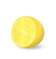 Lemon Slice Isolated vector image