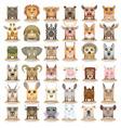 Animals set new big vector image