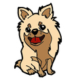 puppy cartoon isolated on white vector image