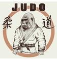 Judoka gorilla dressed in kimono vector image