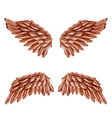 Bird Wing Set vector image