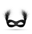 Black carnival mask with fluffy feathers isolated vector image