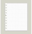 blank ripped paper vector image