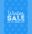 winter sale poster design template or background vector image