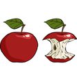 apple and apple core vector image