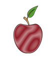 red apple fruit with green leave vector image