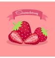 Strawberry Slice Fruit Banner vector image