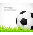 Background with a soccer ball vector image vector image