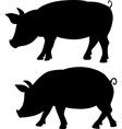 pig silhouette - black vector image
