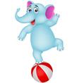 elephant cartoon on ball vector image vector image