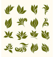 set silhouettes stylized leaves vector image