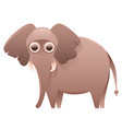 elephant cute cartoon character vector image