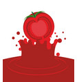 tomato falling in juice isolated red splash on vector image