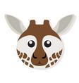 isolated giraffe face vector image