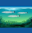 three fish swimming under the sea vector image