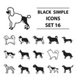 dog breeds set icons in black style big vector image