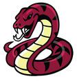 Snake Mascot vector image